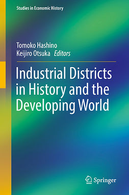 Hashino, Tomoko - Industrial Districts in History and the Developing World, ebook