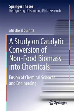Yabushita, Mizuho - A Study on Catalytic Conversion of Non-Food Biomass into Chemicals, e-kirja