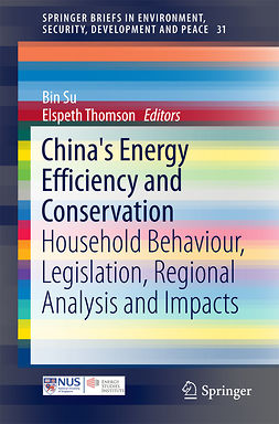 Su, Bin - China's Energy Efficiency and Conservation, e-kirja