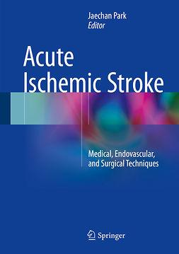 Park, Jaechan - Acute Ischemic Stroke, ebook
