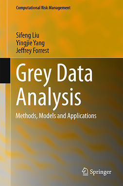 Forrest, Jeffrey - Grey Data Analysis, ebook