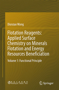 Wang, Dianzuo - Flotation Reagents: Applied Surface Chemistry on Minerals Flotation and Energy Resources Beneficiation, e-bok