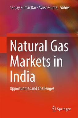 Gupta, Ayush - Natural Gas Markets in India, ebook