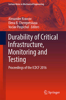 Cherepetskaya, Elena B. - Durability of Critical Infrastructure, Monitoring and Testing, ebook