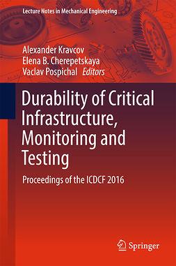 Cherepetskaya, Elena B. - Durability of Critical Infrastructure, Monitoring and Testing, e-kirja