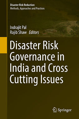 Pal, Indrajit - Disaster Risk Governance in India and Cross Cutting Issues, e-bok