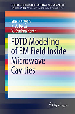 Divya, K. M. - FDTD Modeling of EM Field inside Microwave Cavities, ebook