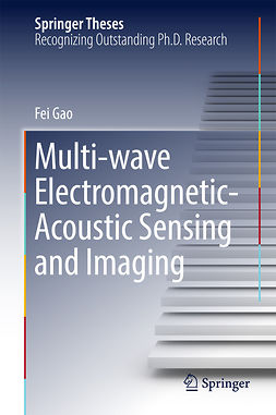 Gao, Fei - Multi-wave Electromagnetic-Acoustic Sensing and Imaging, ebook