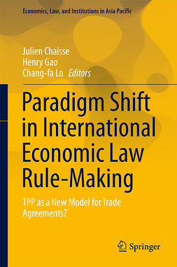 Chaisse, Julien - Paradigm Shift in International Economic Law Rule-Making, ebook