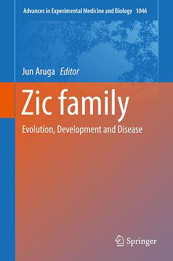 Aruga, Jun - Zic family, e-kirja