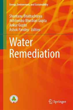Bhattacharya, Shantanu - Water Remediation, e-kirja