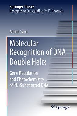 Saha, Abhijit - Molecular Recognition of DNA Double Helix, ebook