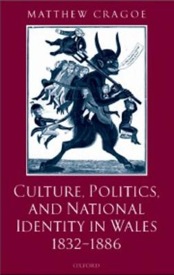 Cragoe, Matthew - Culture, Politics, and National Identity in Wales 1832-1886, e-kirja
