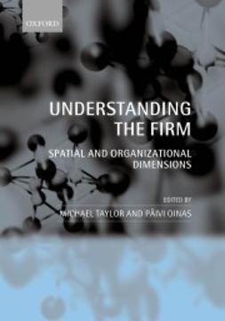 Oinas, Päivi - Understanding the Firm: Spatial and Organizational Dimensions, ebook