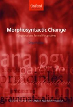 Fischer, Olga - Morphosyntactic Change: Functional and Formal Perspectives, ebook