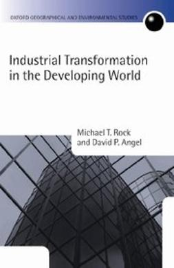 , Michael T. Rock - Industrial Transformation in the Developing World, ebook