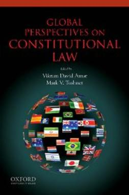 Amar, Vikram - Global Perspectives on Constitutional Law, e-bok