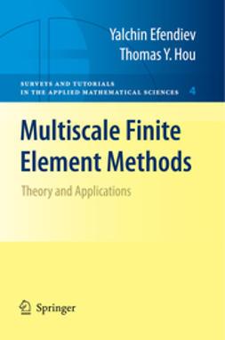 - Multiscale Finite Element Methods, ebook