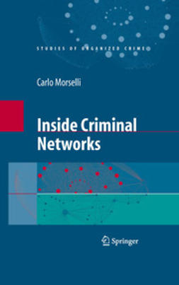 - Inside Criminal Networks, e-bok