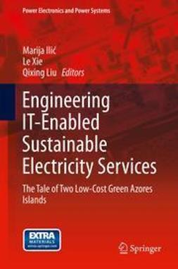 Ilic, Marija - Engineering IT-Enabled Sustainable Electricity Services, ebook