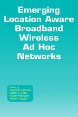 Emerging Location Aware Broadband Wireless Ad Hoc Networks