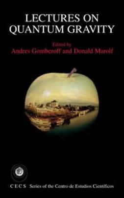 Gomberoff, Andrés - Lectures on Quantum Gravity, ebook