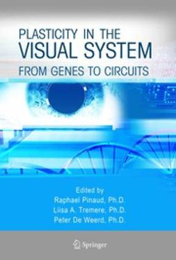 Pinaud, Raphael - Plasticity in the Visual System, e-bok
