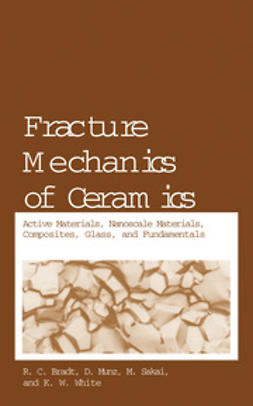 Bradt, R. C. - Fracture Mechanics of Ceramics, ebook