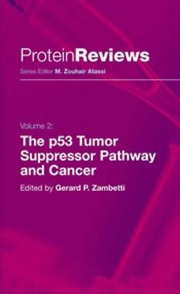 Zambetti, Gerard P. - The p53 Tumor Suppressor Pathway and Cancer, ebook