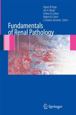 Bruijn, Jan A. - Fundamentals of Renal Pathology, ebook