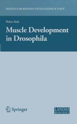 Sink, Helen - Muscle Development in Drosophila, e-bok
