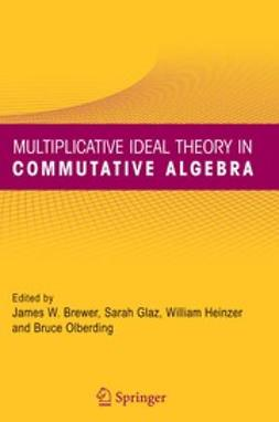 Brewer, James W. - Multiplicative Ideal Theory in Commutative Algebra, ebook