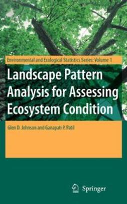 Johnson, Glen D. - Landscape Pattern Analysis for Assessing Ecosystem Condition, e-bok