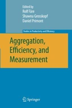 Färe, Rolf - Aggregation, Efficiency, and Measurement, ebook