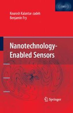 Fry, Benjamin - Nanotechnology-Enabled Sensors, ebook