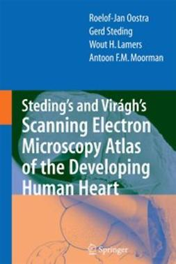 Lamers, Wout H. - Steding's and Virágh's Scanning Electron Microscopy Atlas of the Developing Human Heart, ebook