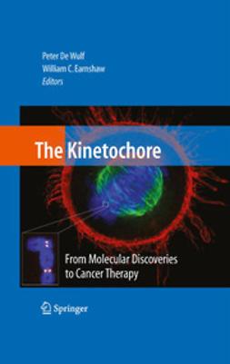- The Kinetochore:, e-kirja