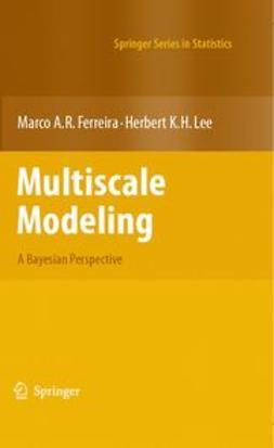 Ferreira, Marco A. R. - Multiscale Modeling, e-kirja