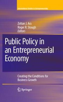 Acs, Zoltan J. - Public Policy in an Entrepreneurial Economy, ebook