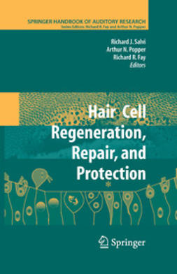 Fay, Richard R. - Hair Cell Regeneration, Repair, and Protection, ebook