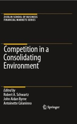 Byrne, John Aidan - Competition in a Consolidating Environment, e-kirja