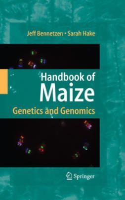 Bennetzen, Jeffrey L. - Handbook of Maize, ebook