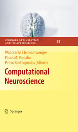 Chaovalitwongse, Wanpracha - Computational Neuroscience, ebook