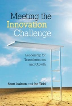 Isaksen, Scott - Meeting the Innovation Challenge: Leadership for Transformation and Growth, ebook