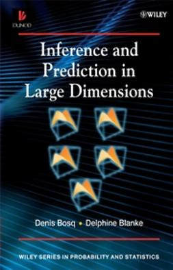 Balnke, Delphine - Inference and Prediction in Large Dimensions, ebook