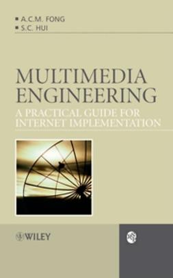 Fong, Alvis Cheuk Ming - Multimedia Engineering: A Practical Guide for Internet Implementation, e-kirja