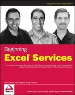 Asnash, Liviu - Beginning Excel Services, ebook