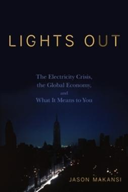 Makansi, Jason - Lights Out: The Electricity Crisis, the Global Economy, and What It Means To You, ebook