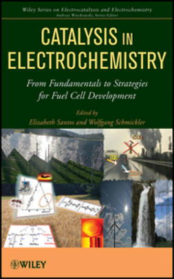 Santos, Elizabeth - Catalysis in Electrochemistry: From Fundamental Aspects to Strategies for Fuel Cell Development, ebook