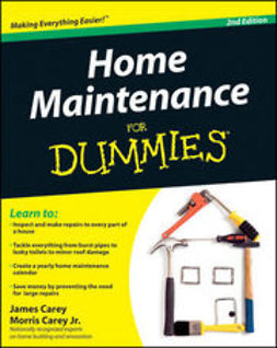 Carey, James - Home Maintenance For Dummies®, e-kirja